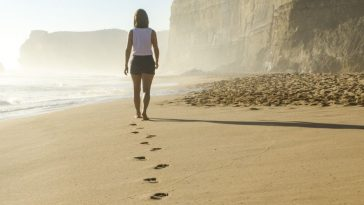 Los 6 primeros pasos ante una herencia |TodoSobreHerencias