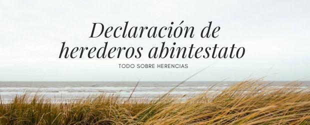 Declaración de herederos abintestato|TodoSobreHerencias