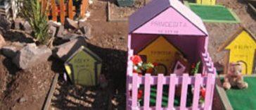 Cementerio de animales |Todo Sobre Herencias